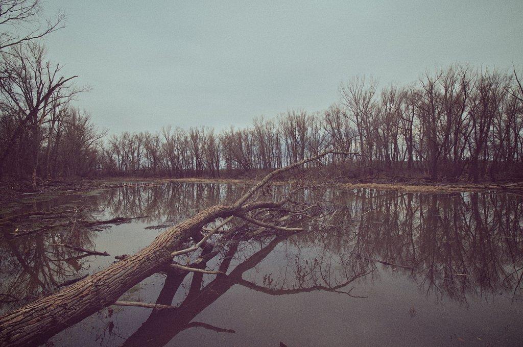 wasteland-1.jpg